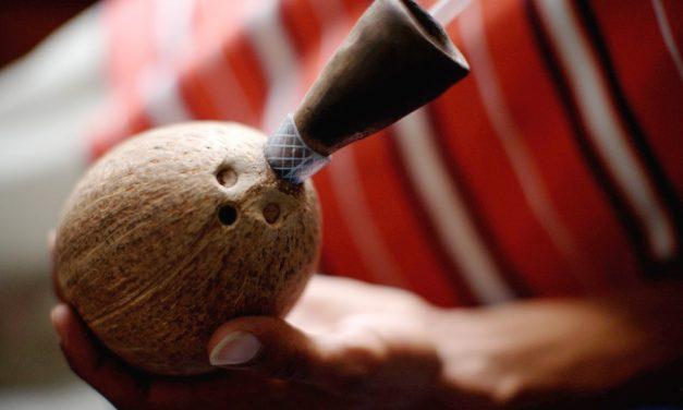 Matéria | Do coco para o mundo